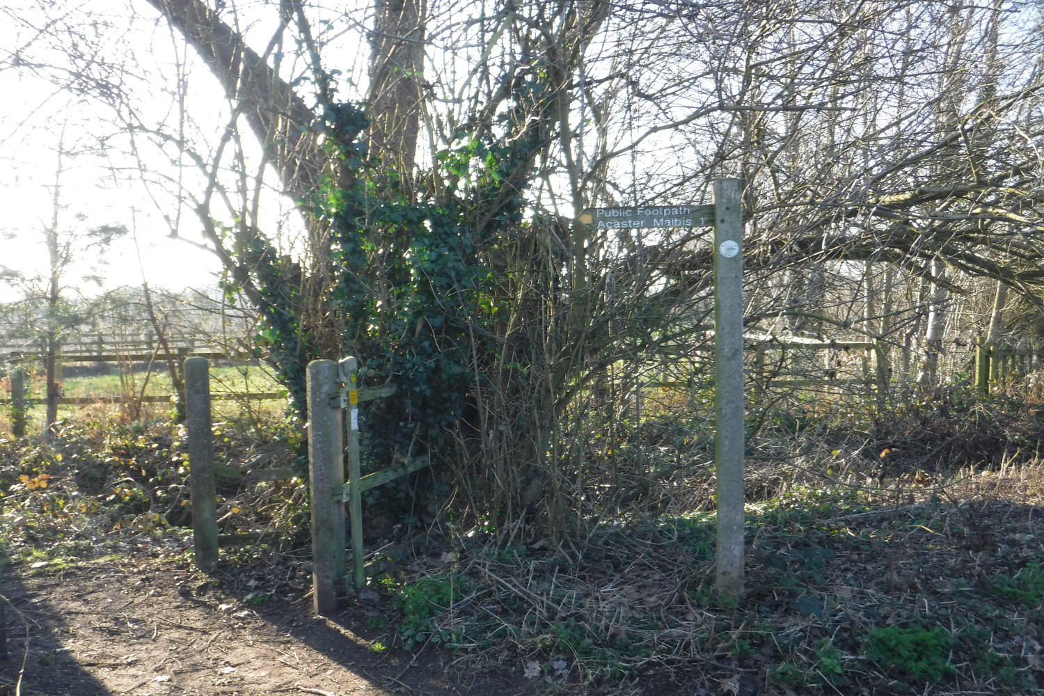 C3_Footpath to Acaster Malbis